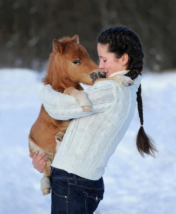 animaux-miniatures-petit-cheval-nain-porté-par-une-fille