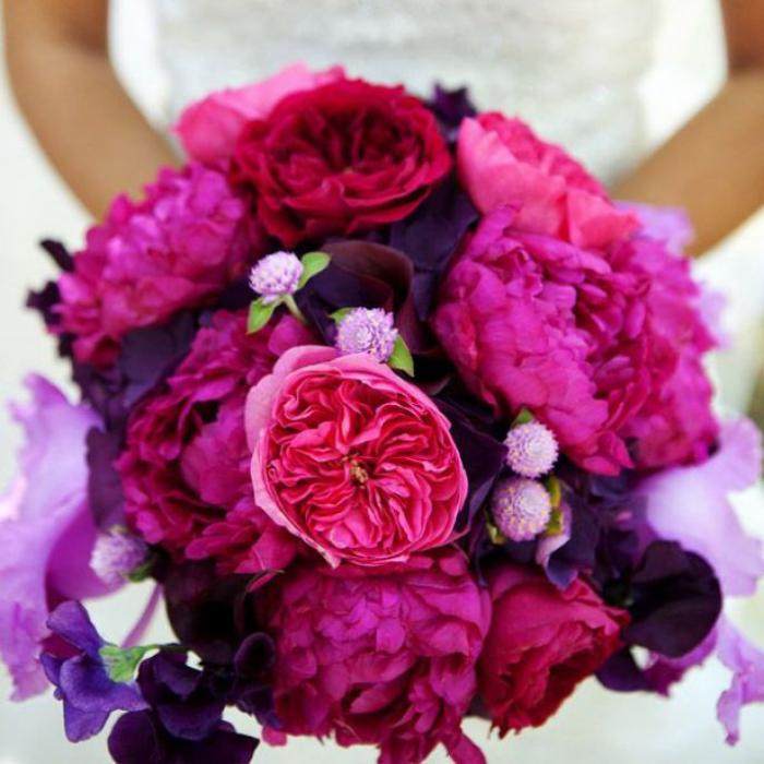 bouquet-de-pivoines-bouquet-pivoines-couleur-pourpre