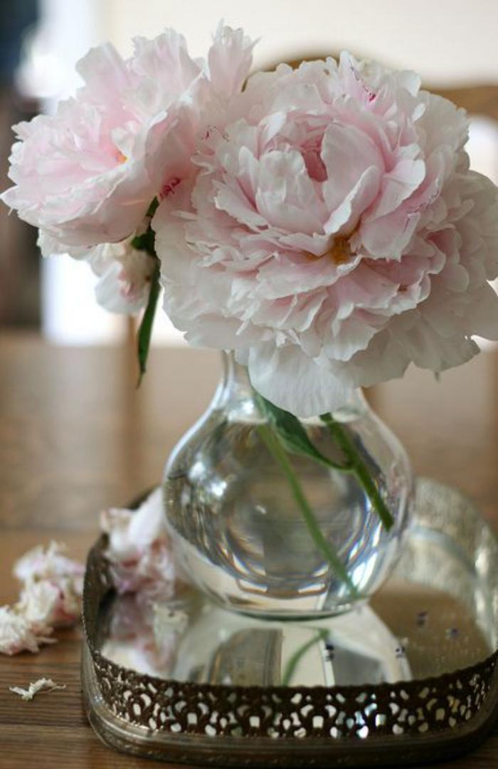 bouquet-de-pivoines-décorer-avec-des-fleurs-fraîches