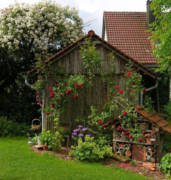 cabanon-de-jardin-super-déco-une-rose-fleurie