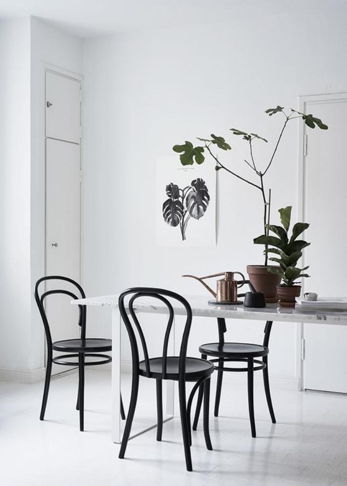chaise-thonet-chaises-thonet-pièce-blanche-et-grande-plante-verte