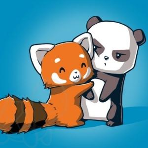 Le bébé panda - pouvez-vous choisir le plus mignon?