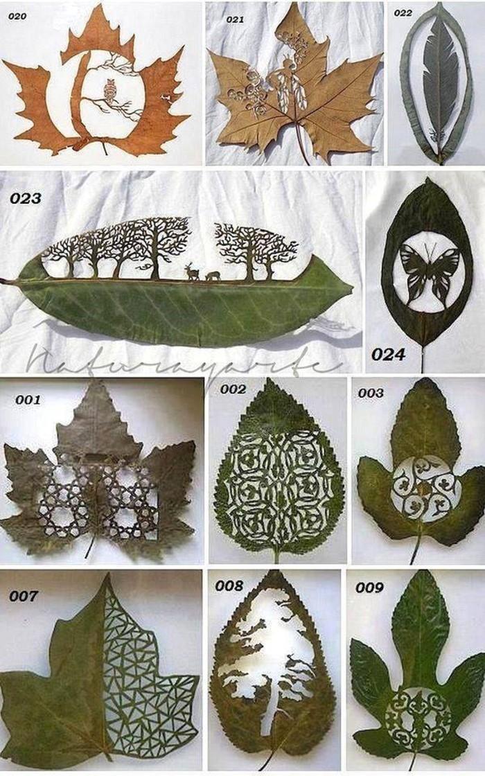 exceptionnel-feuille-d-arbre-dessin-feuille-d-arbre-art