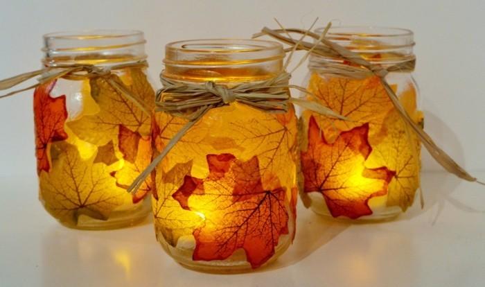 herbier-feuilles-d-arbres-identification-arbre-les-bocales-avec-bougies