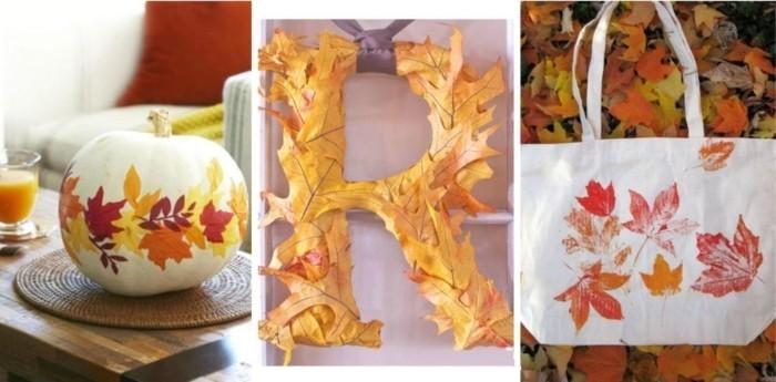 herbier-feuilles-d-arbres-identification-arbre-trois-idées