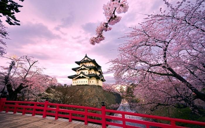 japan-franceloisirs-voyages-celibataires