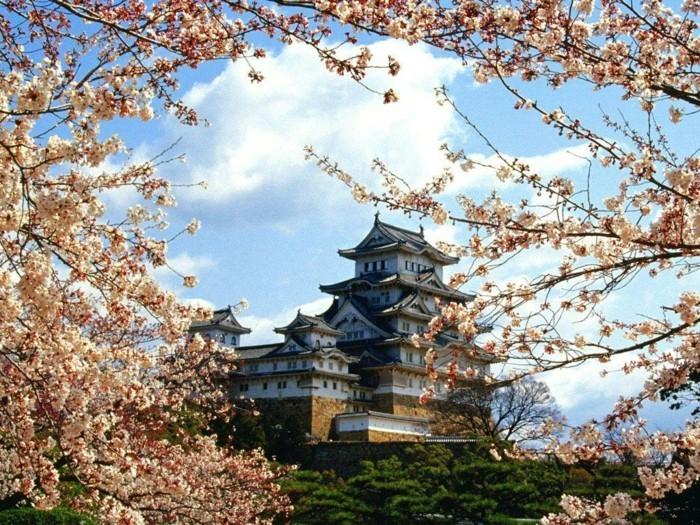 japan-location-france-loisir