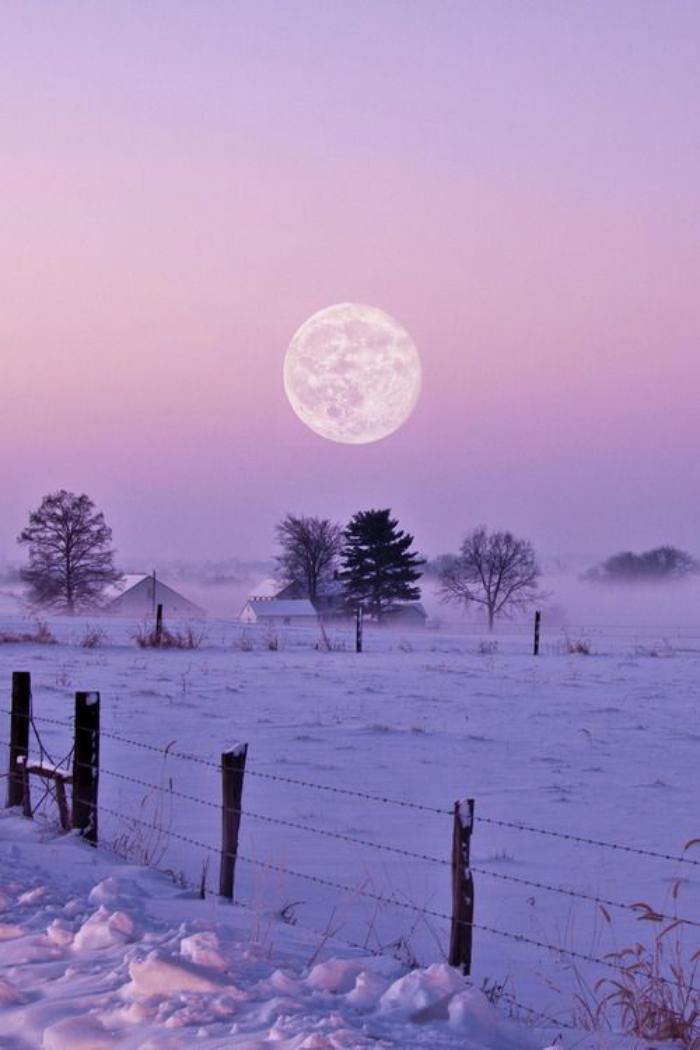 la-pleine-lune-joli-paysage-d'hiver-lune-au-dessus-de-plaine-enneigée