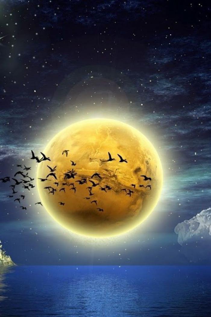 la-pleine-lune-migration-d'oiseaux-sous-la-pleine-lune