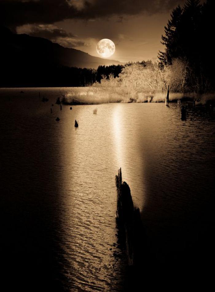 la-pleine-lune-moments-de-la-nuit-uniques