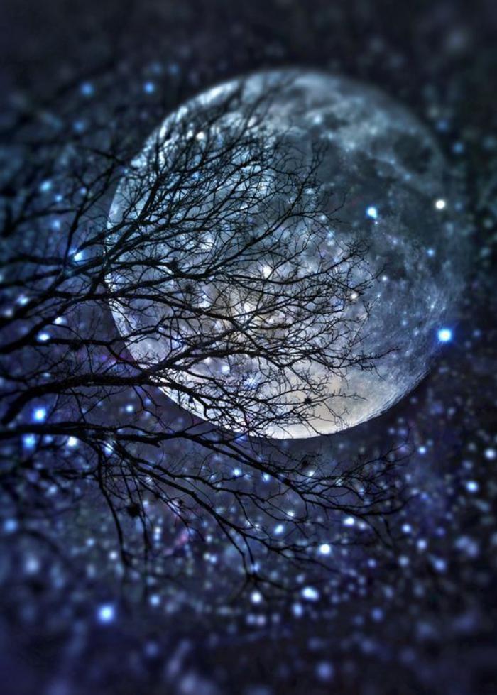 la-pleine-lune-moments-de-la-vie-capturés