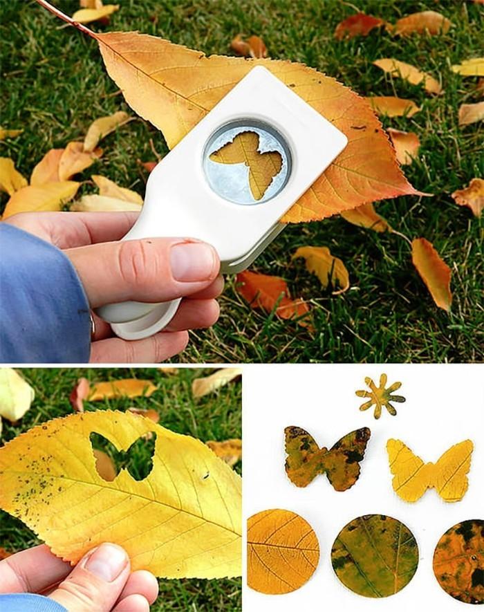 les-différentes-feuilles-d-arbres-faire-déco-diy-quoi-faire-avec-vos-enfants-activité-automne-dehors