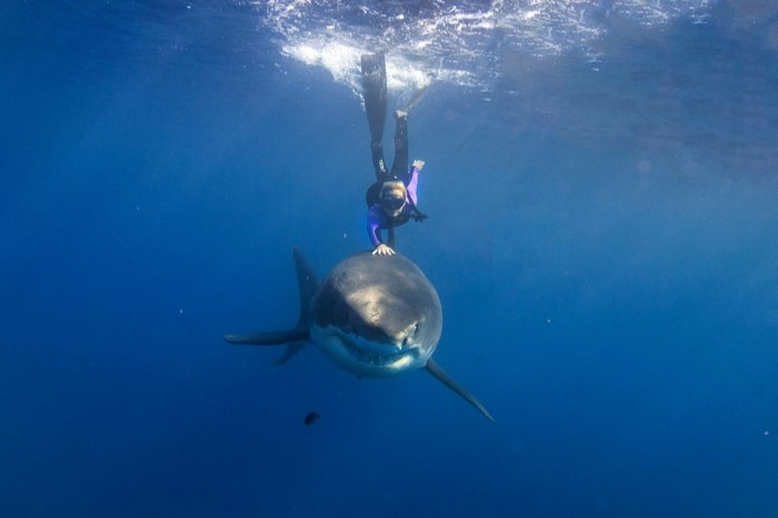 liste-de-choses-à-faire-avant-de-mourir-nager
