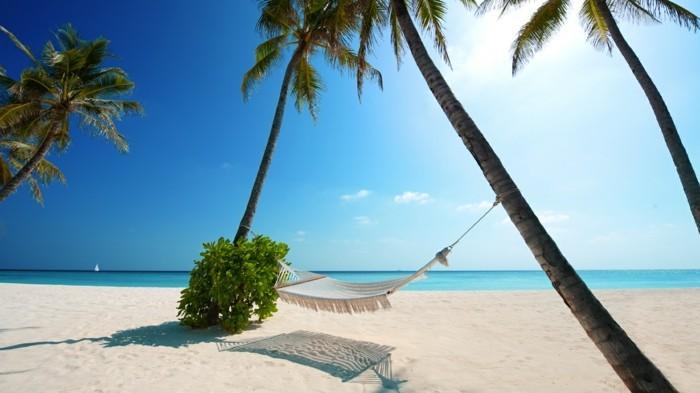 musique-méditation-musique-relaxation-gratuite