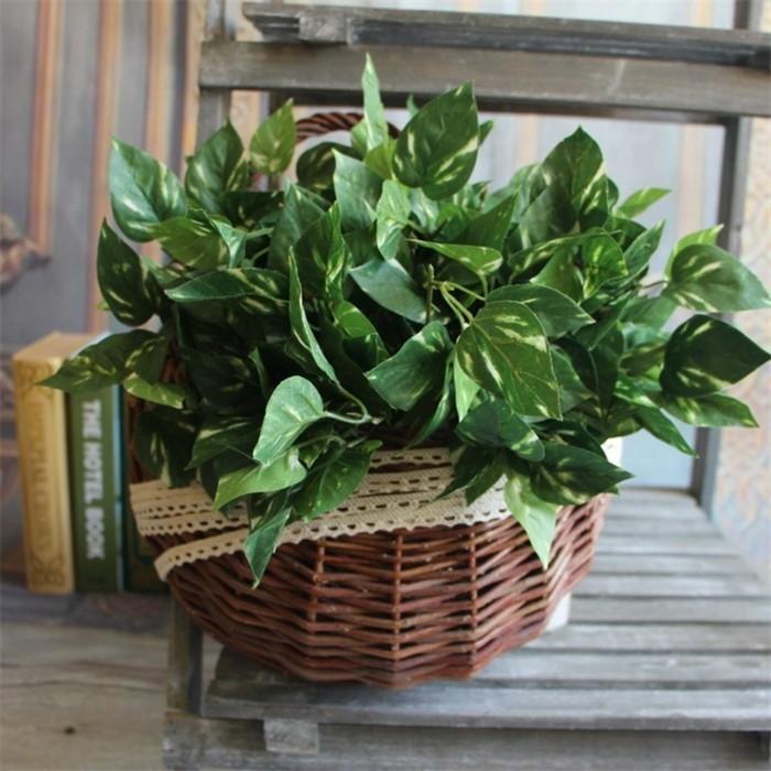 nom-d-arbre-feuille-simple-idée-faire-jolie-déco-une-basket-de-feuilles-verts