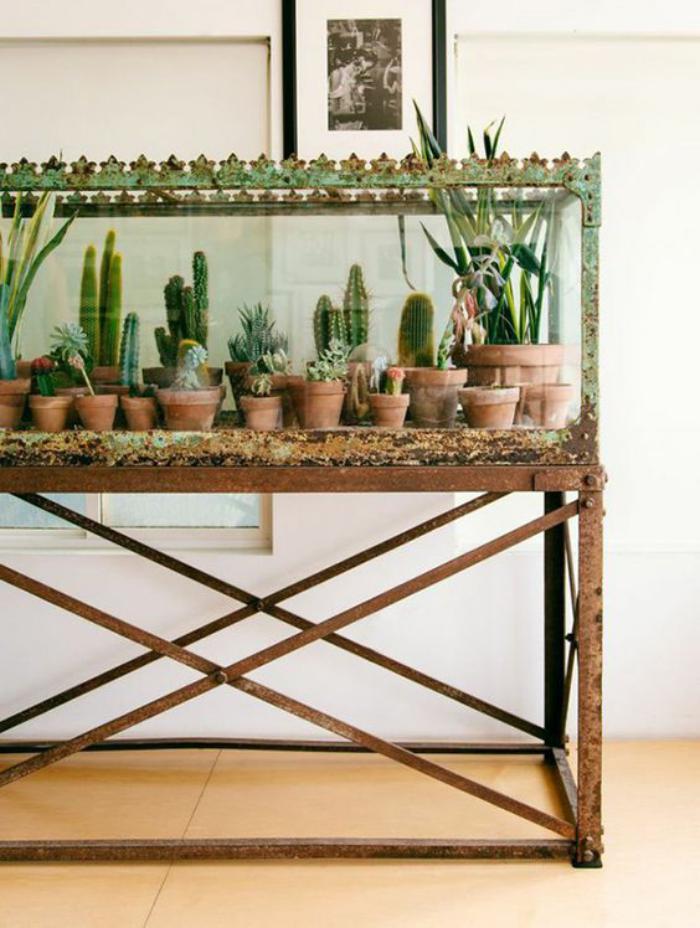 Décorez avec les plantes grasses d\'intérieur - Archzine.fr