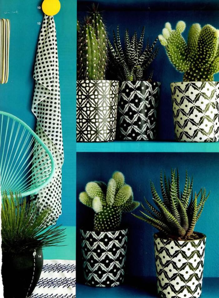 D corez avec les plantes grasses d 39 int rieur for Cactus decoracion
