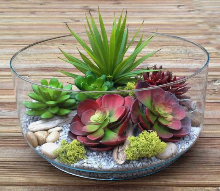 plantes-grasses-d'intérieur-petit-jardin-zen-mini-jardin-de-plantes-succulentes