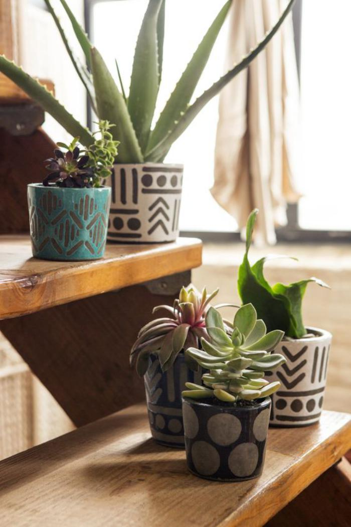 D corez avec les plantes grasses d 39 int rieur - Idee deco plante interieur ...