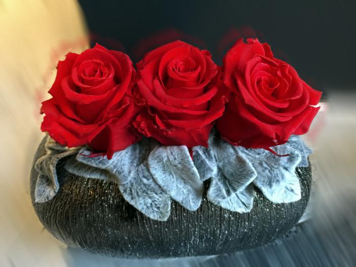 rose-stabilisée-trois-roses-stabilisées-arrangement-fleurs