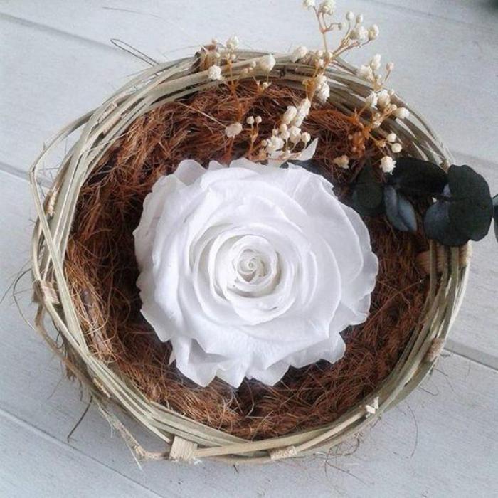 rose-stabilisée-blanche-jolie-décoration-avec-rose-naturelle