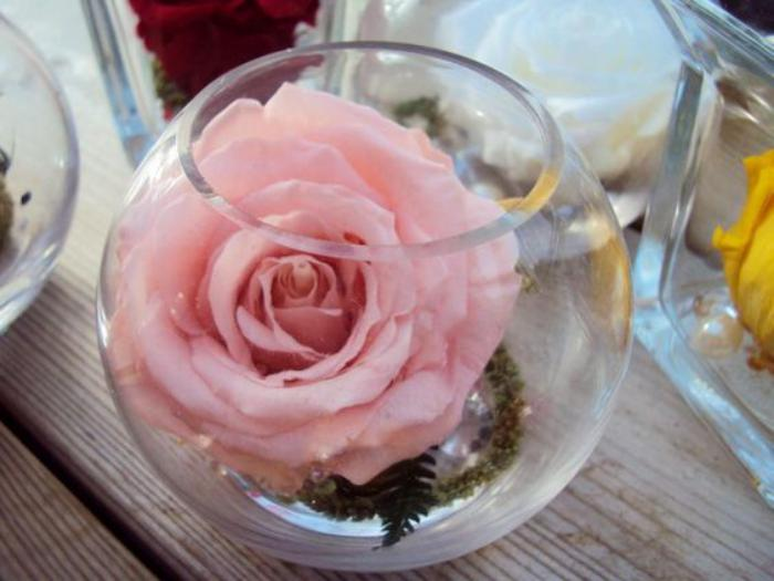 rose-stabilisée-conserver-la-beauté-d'une-rose-pour-plusieurs-années