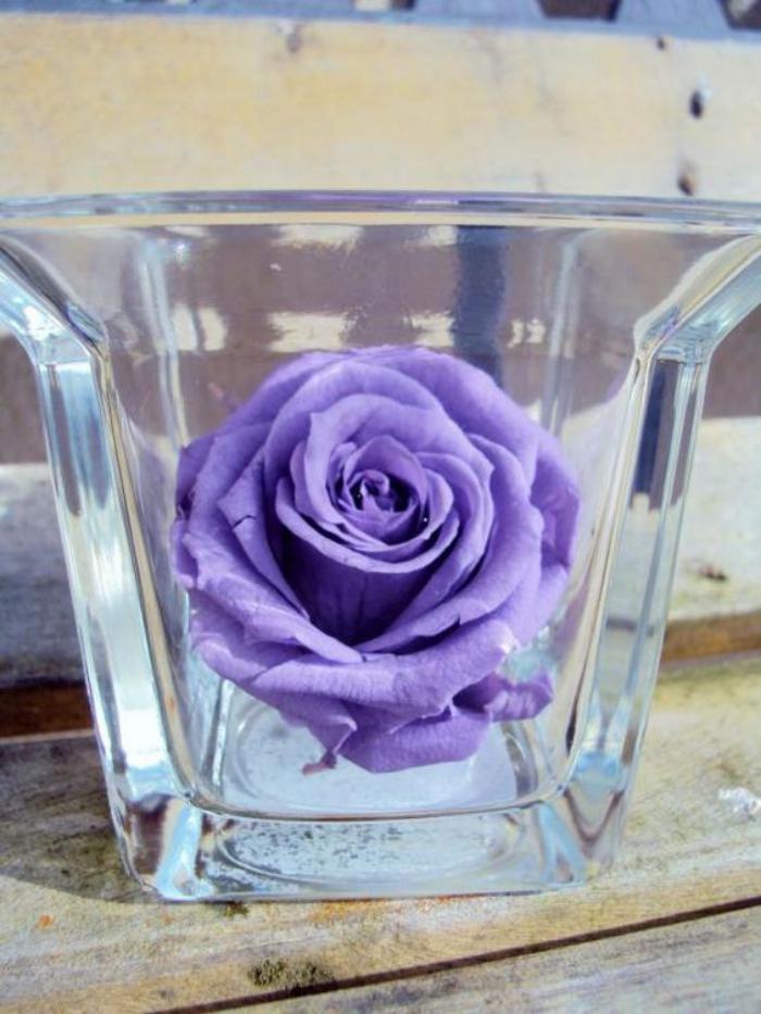 rose-stabilisée-couleur-lilas-tête-de-rose-naturelle