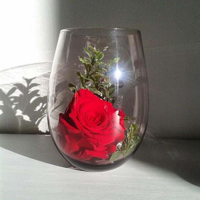 rose-stabilisée-créations-roses-stabilisées