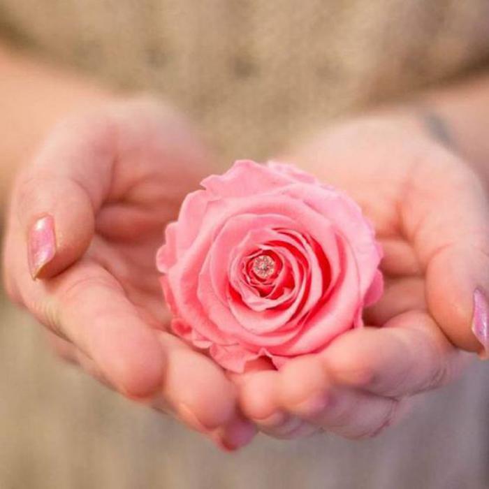 rose-stabilisée-décorée-d'un-ptit-élément-lumineux