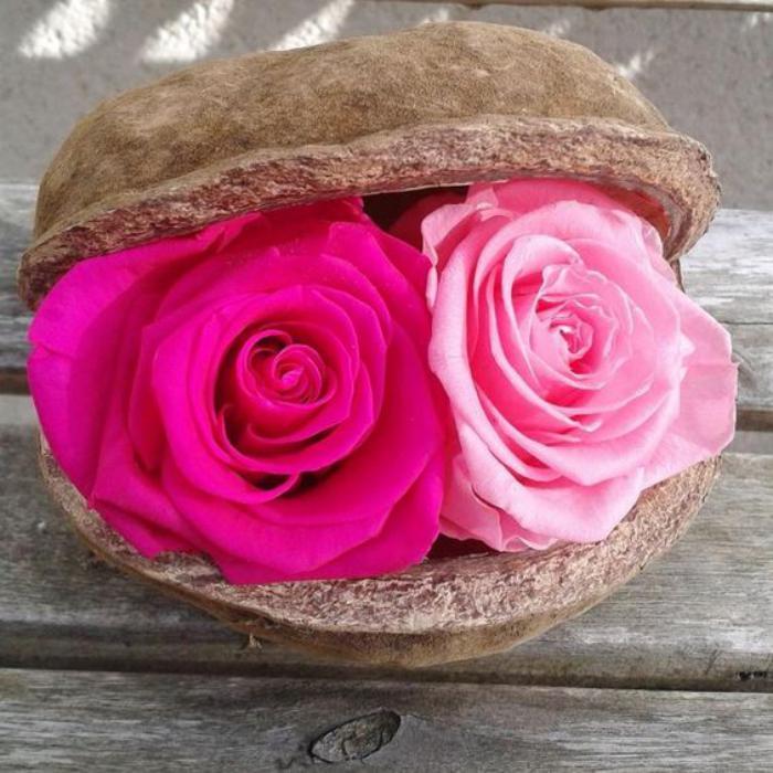 rose-stabilisée-deux-jolies-roses-éternelles-pour-la-déco-de-table