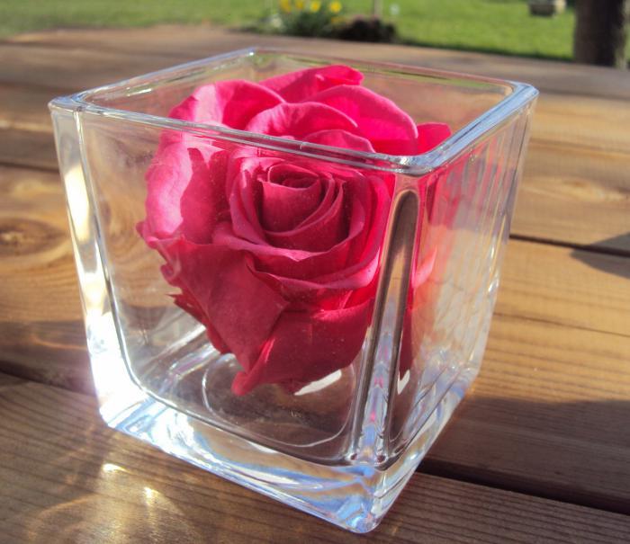 rose-stabilisée-et-vase-cube-décoration