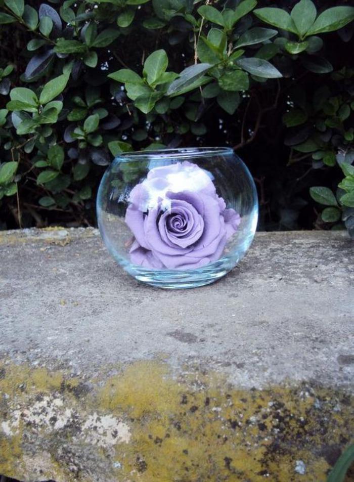 rose-stabilisée-fleurs-éternelles-en-vases