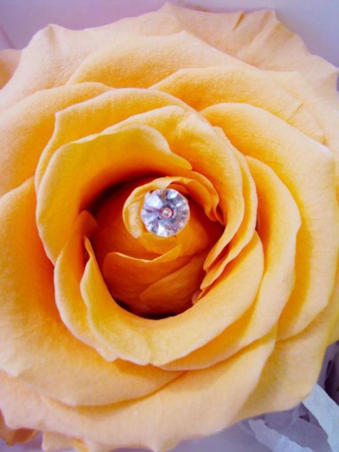 rose-stabilisée-jaune-avec-petit-ornement-blanc