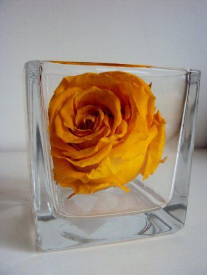 rose-stabilisée-jaune-en-vase-verre