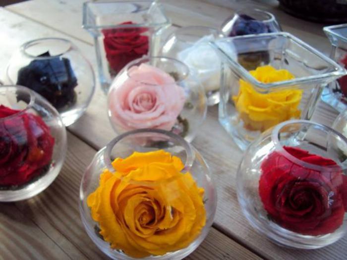 rose-stabilisée-roses-immortalisées-fleurs-stabilisées