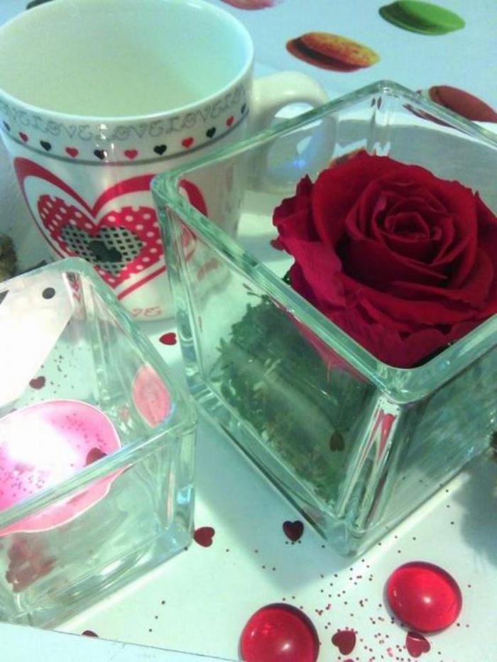 rose-stabilisée-rouge-et-mousse-dans-un-vase
