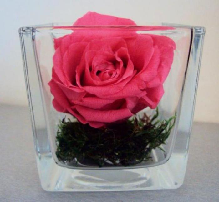 rose-stabilisée-une-seule-tête-de-rose-en-vase