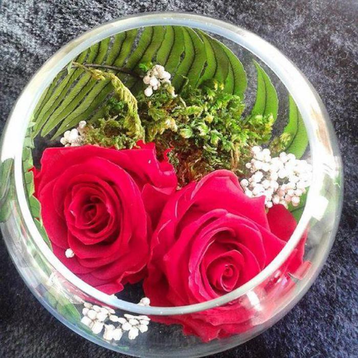 rose-stabilisée-vase-boule-avec-deux-roses-stabilisées-rouges