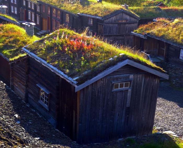 toiture-végétalisée-Norvège-maisons-sympathiques