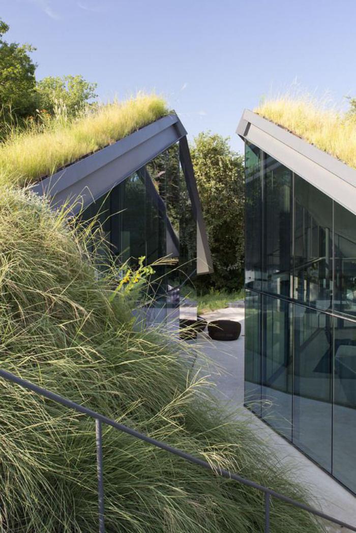 toiture-végétalisée-architecture-moderne-toits-végétaux