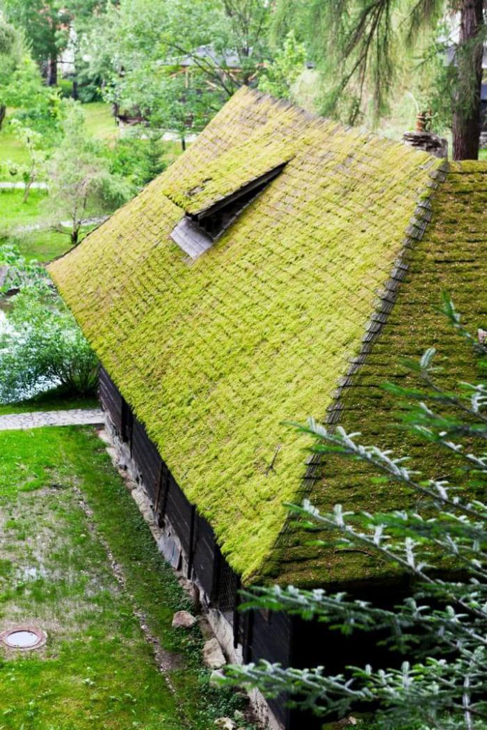 La toiture v g talis e une mode aujourd 39 hui une - Maison rustique yellowstone traditions ...