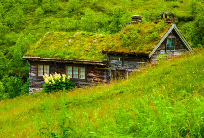 toiture-végétalisée-bâtiments-miraculeux-au-sein-de-la-montagne