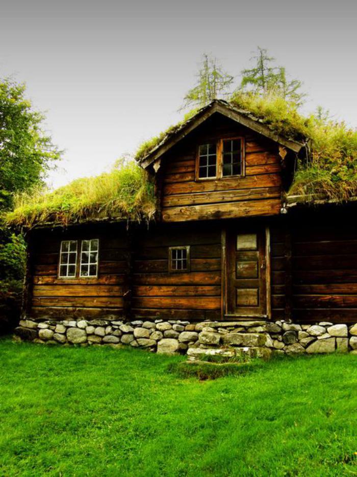 toiture-végétalisée-joli-chalet-ancien-à-toiture-verte