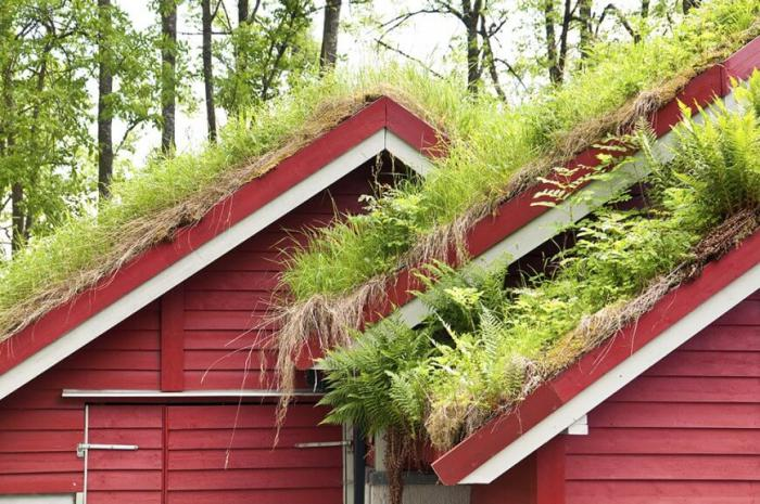 toiture-végétalisée-maisons-à-toitures-vertes-aux-pays-scandinaves