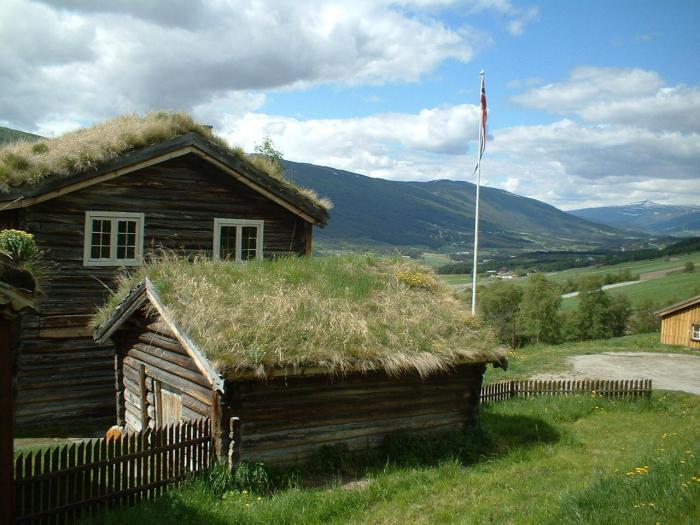 toiture-végétalisée-maisons-rustiques-à-toitures-végétales