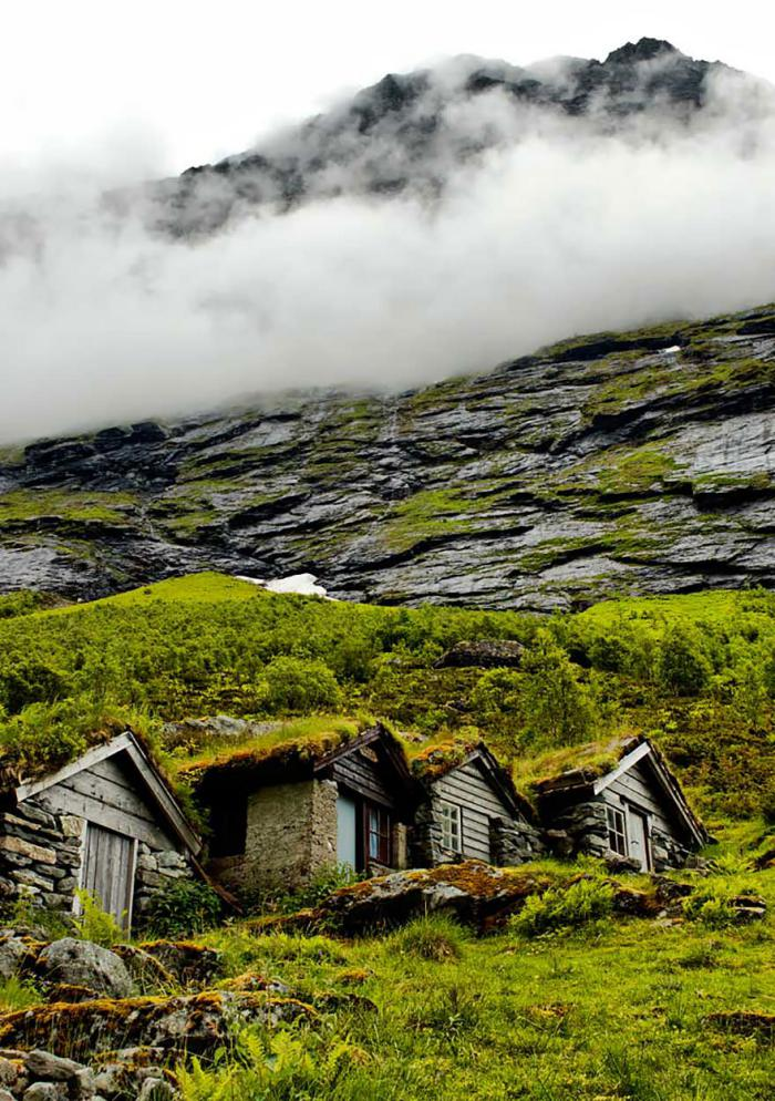 toiture-végétalisée-sur-les-maisons-traditionnelles-scandinaves