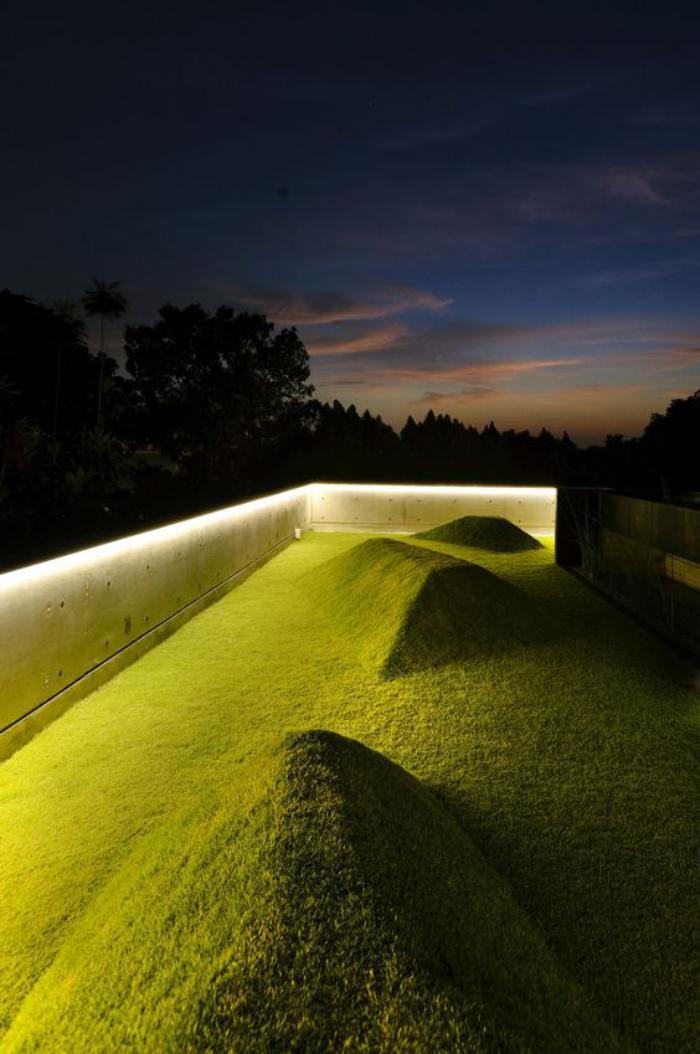 toiture-végétalisée-toiture-verte-contemporaine