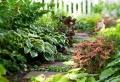 Nos propositions en photos et vidéos pour faire une allée de jardin!