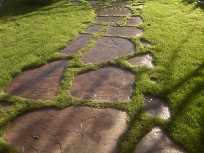 00-originale-idee-pour-creer-une-allee-de-jardin-gravier-pelouse-verte-gravie-allée