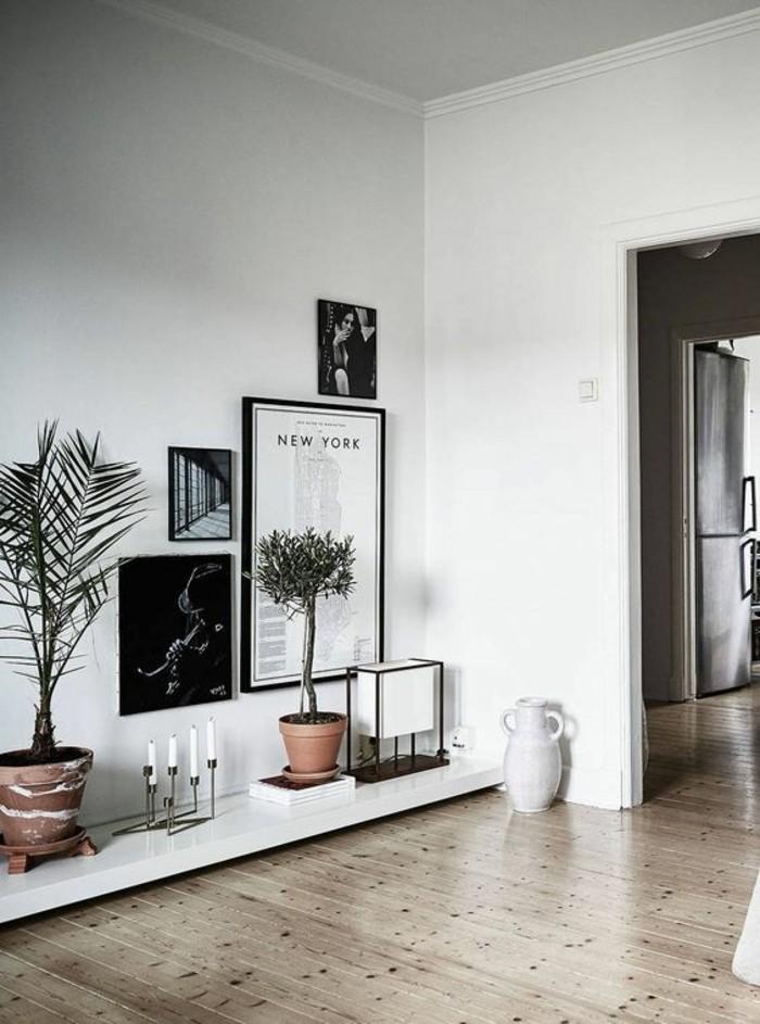 1-décorer-son-appartement-sol-en-parquet-clair-murs-blancs-plantes-vertes-d-interieur